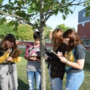 Madison Southern High School students take measurements