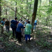 Participants learn about trees