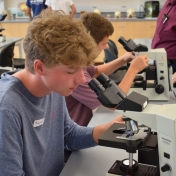 Students looking at cells