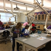 Students get the opportunity to disect in a biology lab